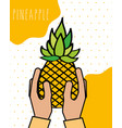 hands fresh pineapple natural drawn image dotted vector image