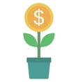 Money flower with golden coin vector image