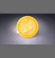 one coin of bitcoin golden symbol of the digital vector image vector image
