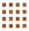wooden ecology icons vector image vector image