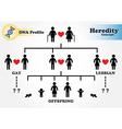 Hereditary diagram DNA profile vector image
