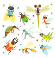 bugs butterfly and other insects in cartoon style vector image vector image