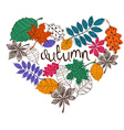 Colorful Patterned Autumn Leaves In A Heart Shape vector image vector image