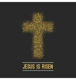 Easter background He is risen Gold on dark vector image vector image
