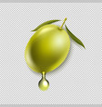 olives with leaf isolated transparent background vector image