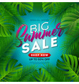 summer sale design with tropical palm leaves on vector image vector image