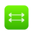 two barbells icon digital green vector image vector image