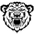 tiger head black and white tatto vector image