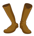 A pair of a fashionable brown boots vector image vector image