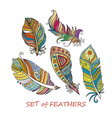 Ornate Set of Stylized and Abstract Feathers