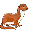 weasel animal cartoon vector image vector image