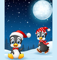 christmas penguins in the snow vector image