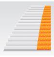 Cigarettes in line vector image