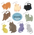 Cute cats and kittens depicting different fur vector image
