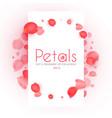 flying petals banner cosmetics wedding and vector image vector image
