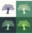 Hand drawn graphic olive trees set vector image vector image