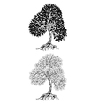 two contour tree vector image vector image