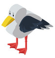 3d design for seagull vector image