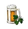 Beer glass mug with hop Sketch vector image vector image