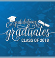 on seamless graduations background vector image vector image