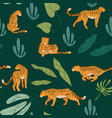 running wild animal leopard or cheetah pattern vector image