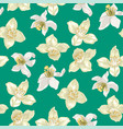 seamless pattern with citrus and jasmine flowers vector image vector image