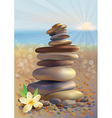 Spa stones and white flower vector image vector image