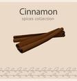 cinnamon image vector image