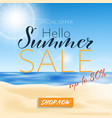 hello summer sale banner template vector image