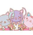 kitty cats dancing ballet cartoon vector image