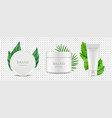 organic cosmetics tube and tube boxes with vector image vector image