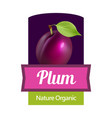 plum on label - sticker for jam or wine in juicy vector image vector image