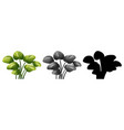 set plant design vector image vector image
