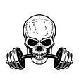 skull with barbell in teeth design element for vector image