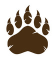 brown bear paw with claw vector image vector image