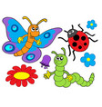 bug and flower vector image