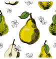 pear sketch seamless patternvintage ink hand vector image vector image