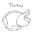 raw turkey full carcass realistic vector image vector image