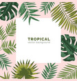 tropical backdrop or background with frame or vector image