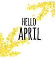 yellow mimosa text hello april