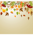 autumn greeting card vector image vector image