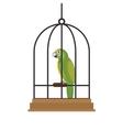 bird pet shop icon vector image vector image