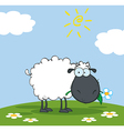 Black Sheep Cartoon Character Eating A Flower vector image vector image