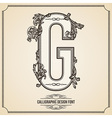 Calligraphic font Letter G vector image vector image