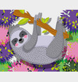 cute sloth wildlife animal vector image