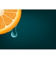 Flowing down drop on an orange segment background vector image