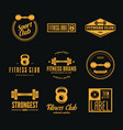 set fitness emblems signs labels badges vector image vector image