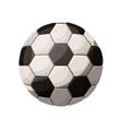 silhouette color with soccer ball vector image vector image