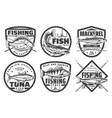 fishing tours fisherman camp sport club badges vector image