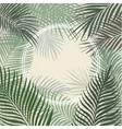 Hand drawn light green frame of palm leaves vector image